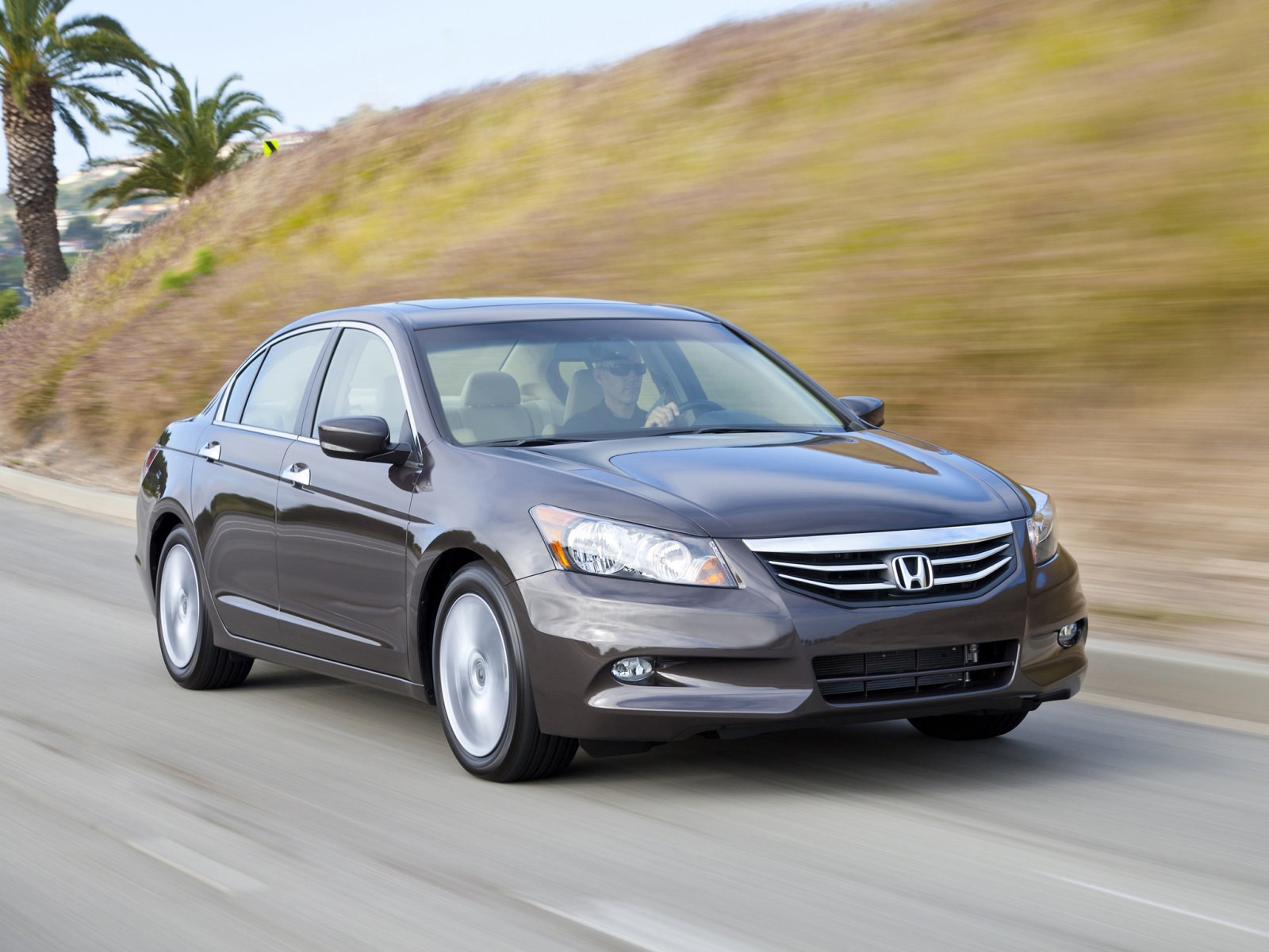 Honda Accord Sedan 2012